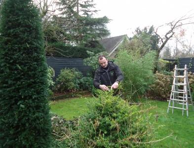 Onderhoud van tuinen
